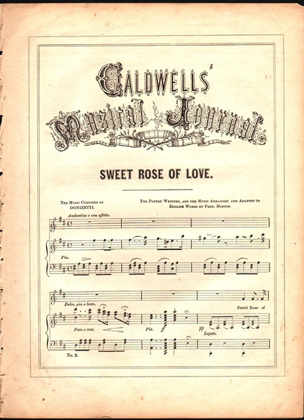 'Sweet Rose of Love' - Song