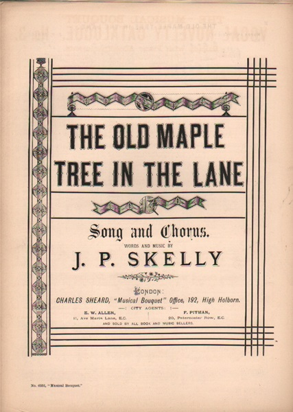 The Old Maple Tree - song & chorus