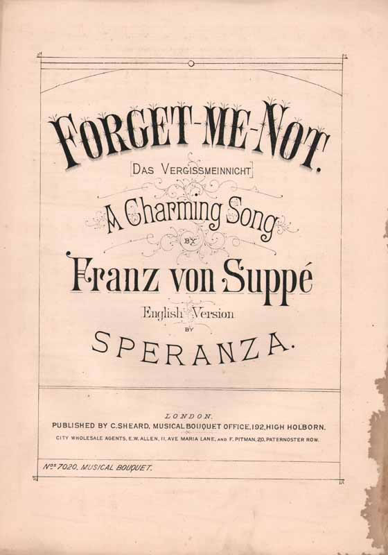 Forget-me-not - (Das Vergissmeinnicht)