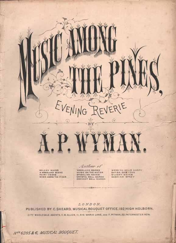 Music Among the Pines  -evening rêverie