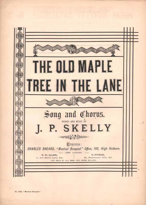 The old maple tree in the lane